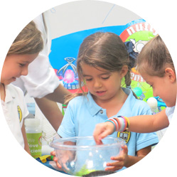 Nutty Scientists Southeast Michigan After School Programs